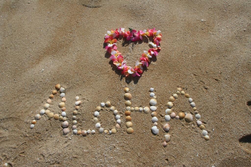aloha-305853