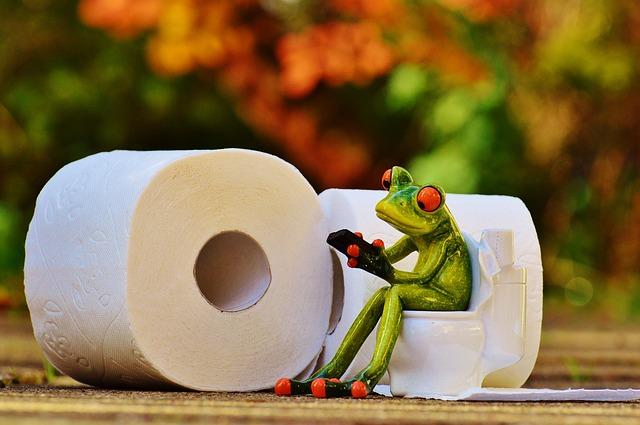 frog-1037247_640