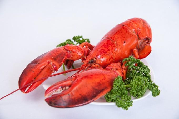 shrimp-510525_1280