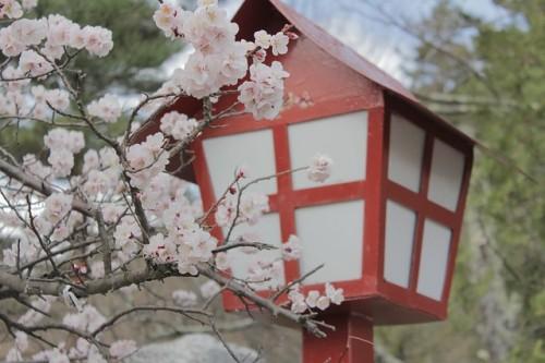 japan-955813_640