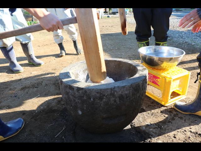 小田原での餅つき体験