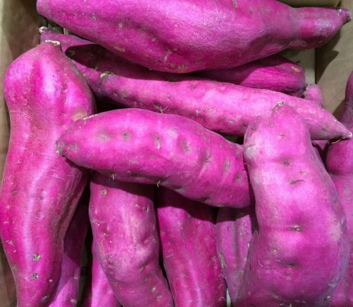sweet-potato-1586319_1920
